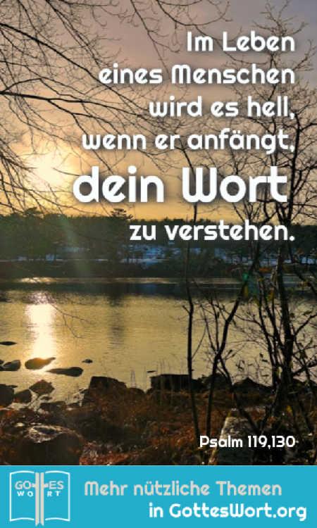 ✚ Im Leben eines Menschen wird es hell, wenn er anfängt, dein Wort zu verstehen. Wer bisher gedankenlos durchs Leben ging, der wird jetzt klug. Psalm 119,130 https://www.gottes-wort.com/berichte.html