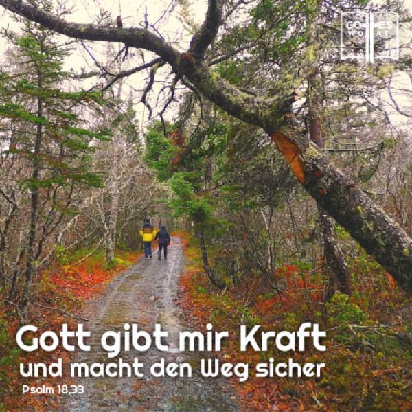 ✚ Der Weg, die Wahrheit, und das Leben: Gott gibt mir Kraft und macht den Weg sicher. Psalm 18,33 Lese: https://www.gottes-wort.com/weg.html #weg #wahrheit #leben #jesus