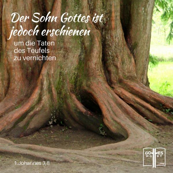 ✚ Das unbegrenzte Leben (1.Johannes 3,8)  Lese: https://www.gottes-wort.com/unbegrenzte-leben.html #unbegrenzteleben #leben #lebenimueberfluss