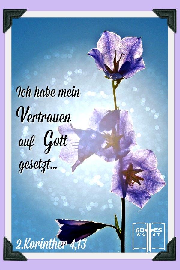 Der Wille Gottes ist das sein Wort in Erfüllung geht. Deshalb können wir ihm den Glauben schenken. 2Korinther 4,13 #vaterunser #gebet #willegottes #glaube lese www.gottes-wort.com/vater-unser.html